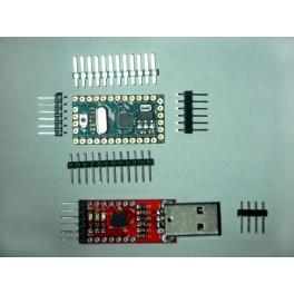 Arduino Pro Mini ATmega 328 5V 16M et module CP2102